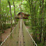 Pont de singe Margaux